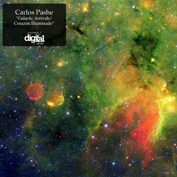 133-SD Carlos Pashe - Stripped Digital