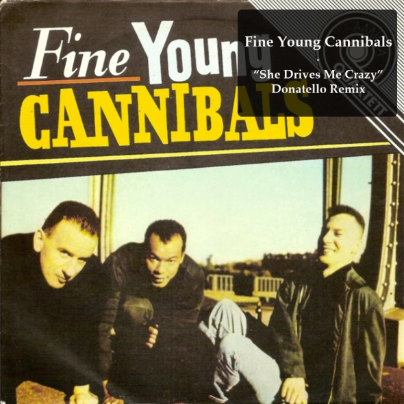 Fine Young Cannibals - She Drives Me Crazy - Donatello Remix